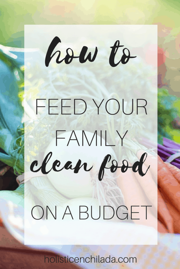 clean food on a budget