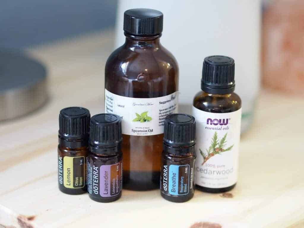 boost immune system essential oils