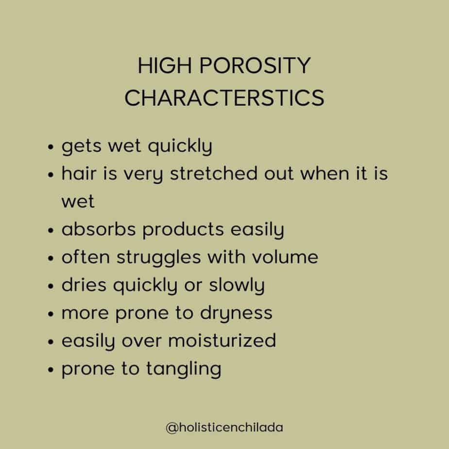 high porosity hair characteristics